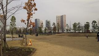 20161204芝浦中央公園(その9)