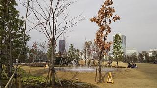 20161204芝浦中央公園(その10)