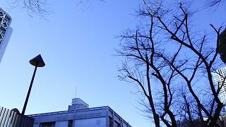 20161210戸山公園(その6)