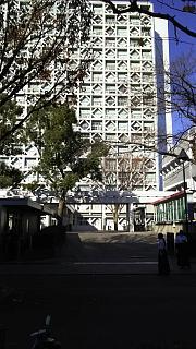 20161210戸山公園(その14)