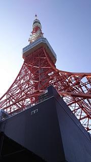 20161002東京タワー→増上寺(その9)
