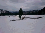 棚田は雪ノ下