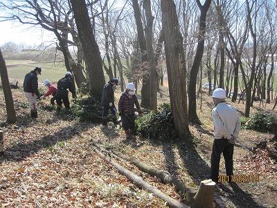 倒した木の整理