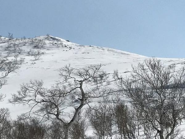 やっぱり白樺山だ!!