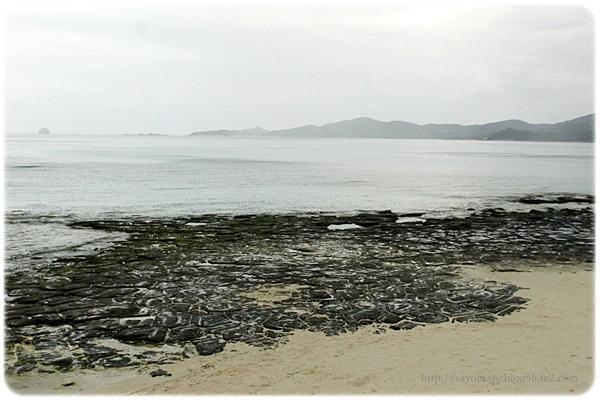 sayomaru19-445.jpg