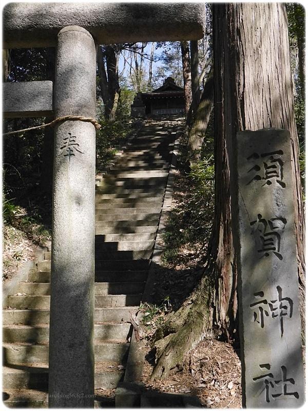 sayomaru19-482.jpg