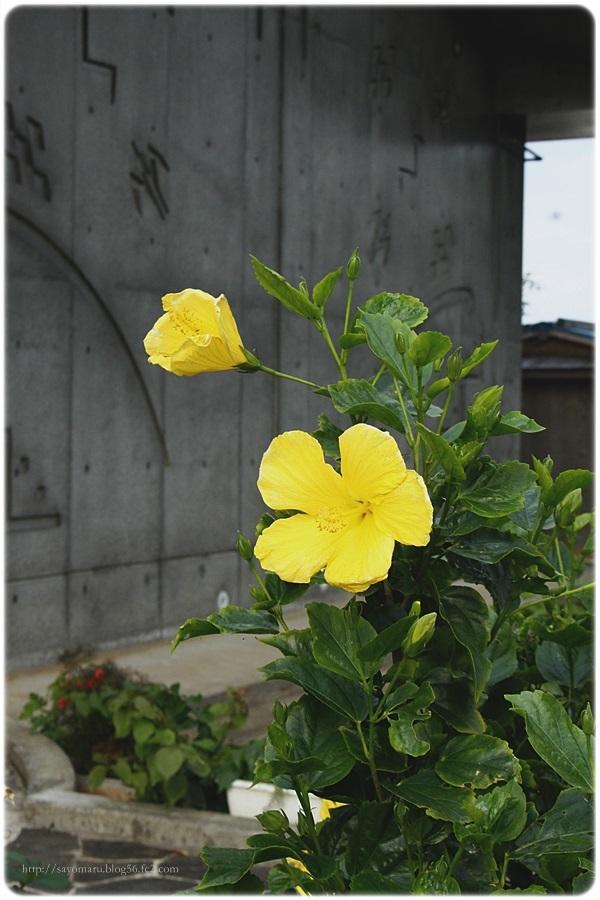 sayomaru19-645.jpg