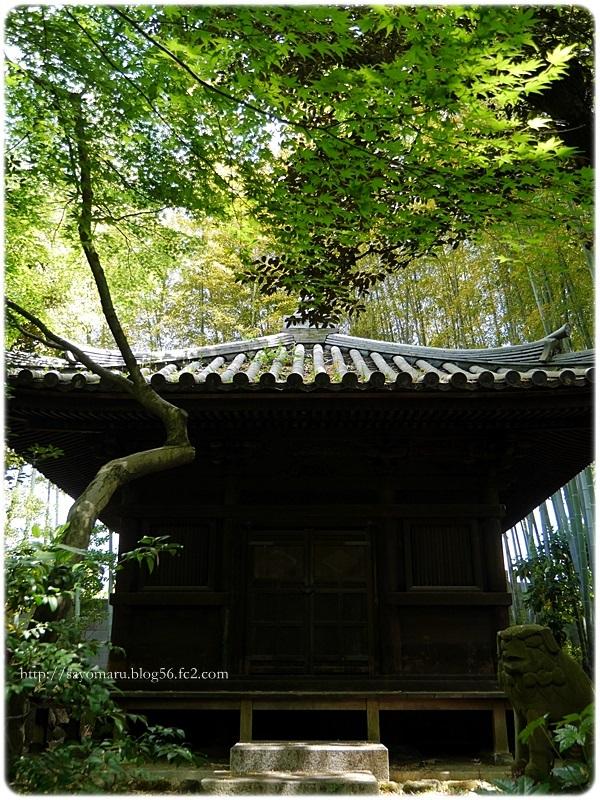 sayomaru20-342.jpg