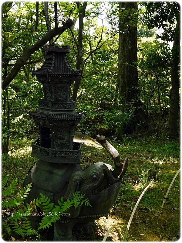 sayomaru20-346.jpg