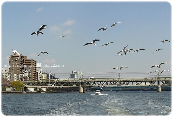 sayomaru20-76.jpg