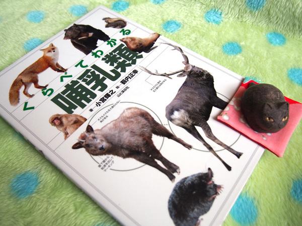 くらべてわかる哺乳類