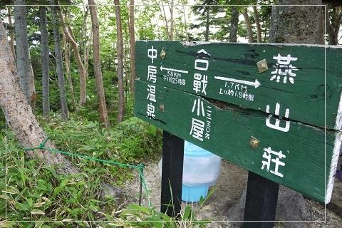 160710tsubakuro113.jpg