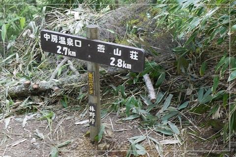 160710tsubakuro116.jpg