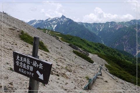 160710tsubakuro99.jpg