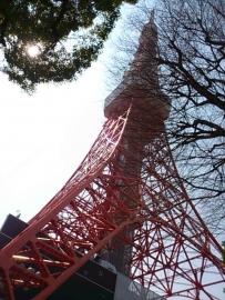 春の東京タワー。