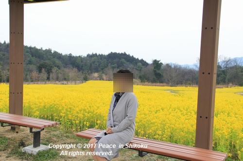 naohana-0306-6323.jpg