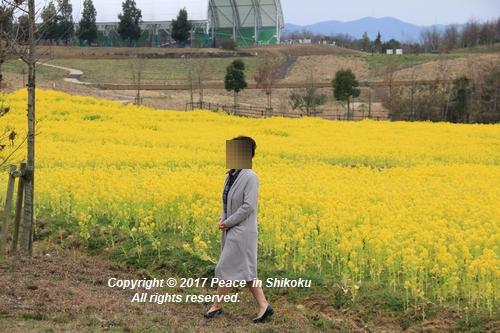 naohana-0306-6413.jpg