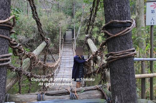 shikoku-0313-6590.jpg