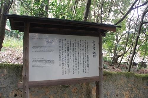shikoku-0313-6631.jpg
