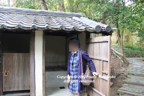shikoku-0313-6655.jpg
