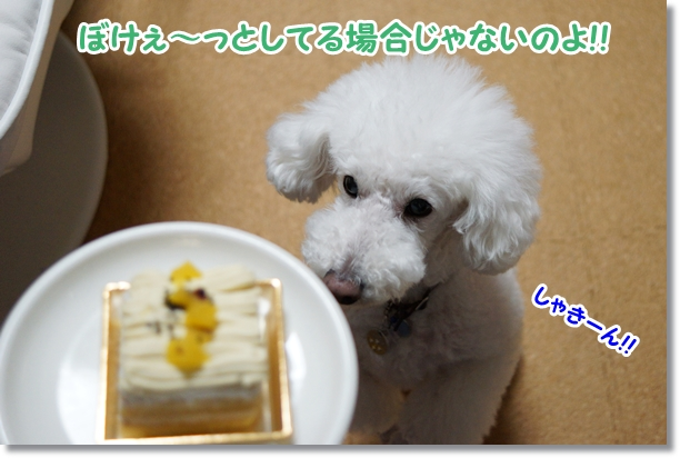 Happy Birthday♪2