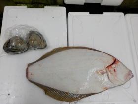 1鮮魚セット2017325