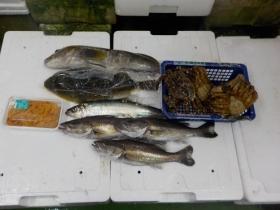 6鮮魚セット2017418