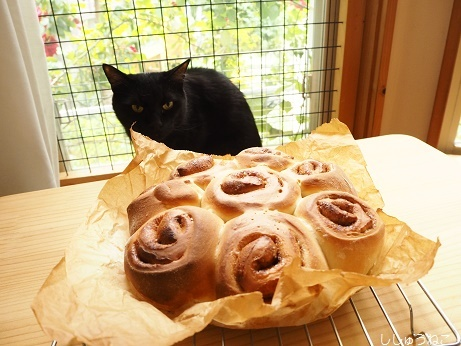 シナモンロールと黒猫