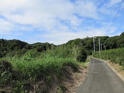 IMG_0443 舟ヶ谷の城山