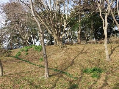 IMG_5039 掛川古城