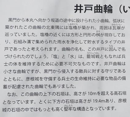IMG_5959 井戸曲輪