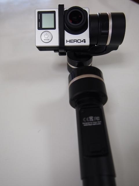 P3040045 (480x640)