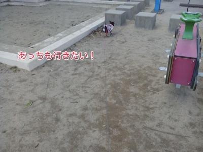 17-02-15-04-22-48-865_deco.jpg