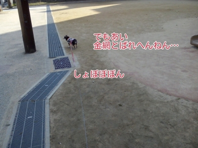 17-02-15-04-24-47-405_deco.jpg
