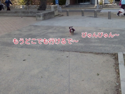 17-02-15-04-31-59-842_deco.jpg