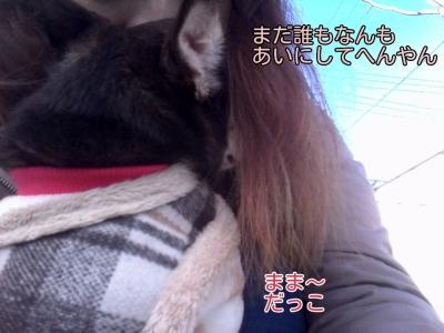 17-02-16-04-46-18-540_deco.jpg