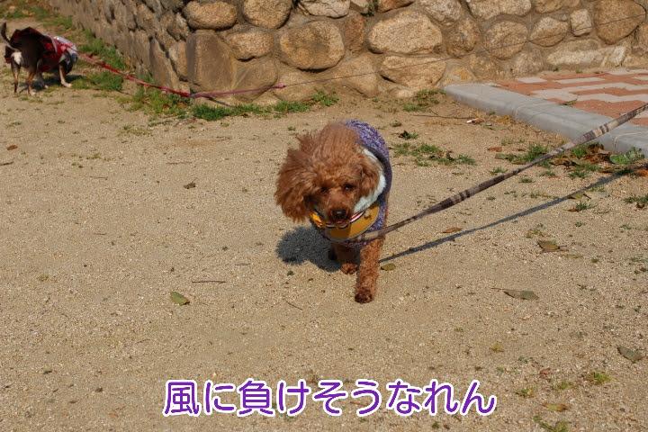 17-04-03-02-16-53-781_deco.jpg