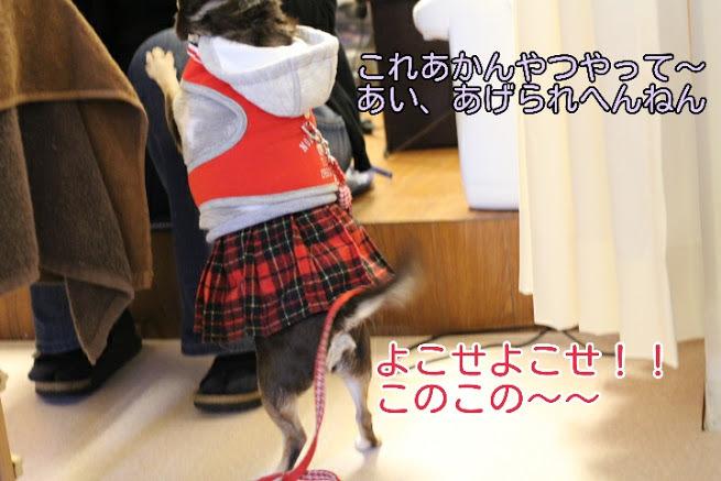 17-04-09-05-38-37-289_deco.jpg