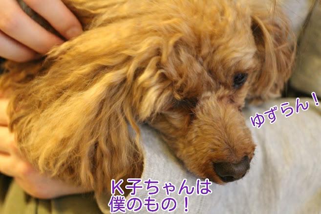 17-04-09-06-51-02-929_deco.jpg