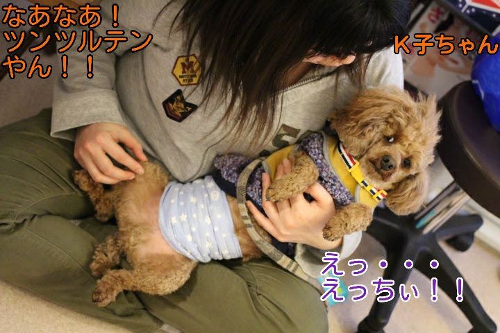 17-04-10-02-11-15-489_deco.jpg