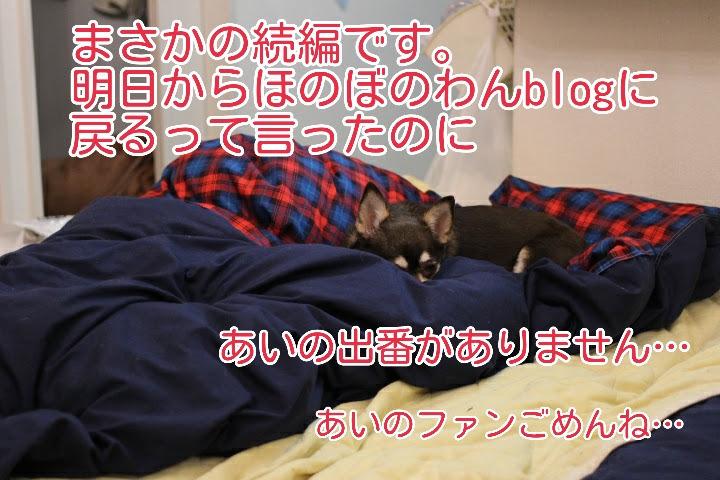 17-04-15-09-02-01-088_deco.jpg