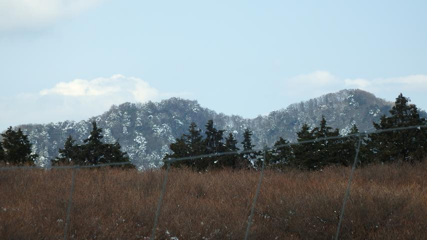 ツツジ群落の上に高越山のピーク