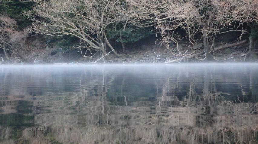 諭鶴羽ダム池で蒸気霧が見られた