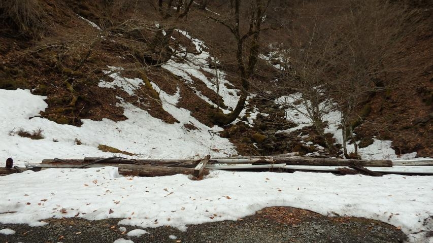 剣山スーパー林道に残る雪