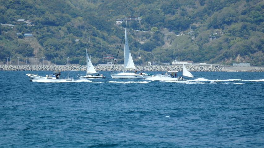 ヨットと漁船が競走か?