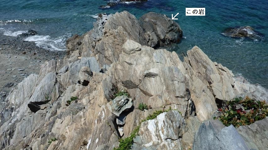 鞘型褶曲の見られる岩