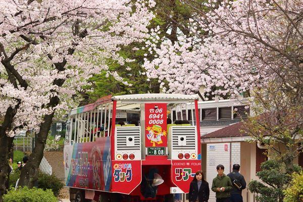 02, 2017-04-09 桜之宮 大阪城公園 103 600×400