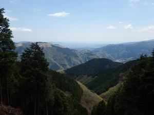 大野山が見える