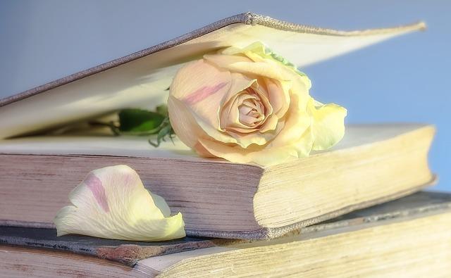 フリー画像・バラの花のしおり