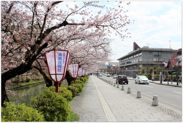 青森県 弘前市 弘前公園 さくらまつり 弘前城植物園 観光 写真